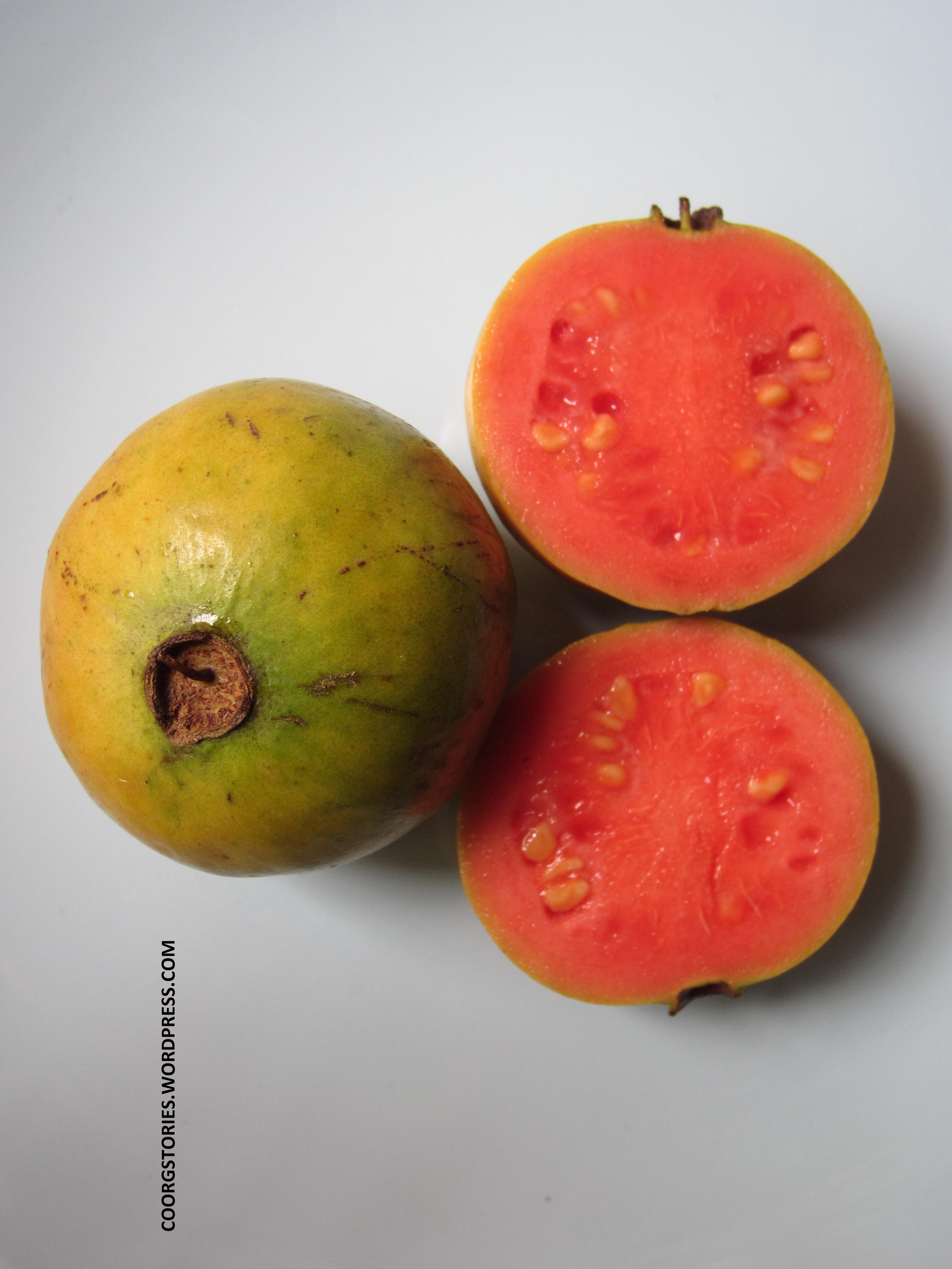 Medicinal Properties Of Guava: