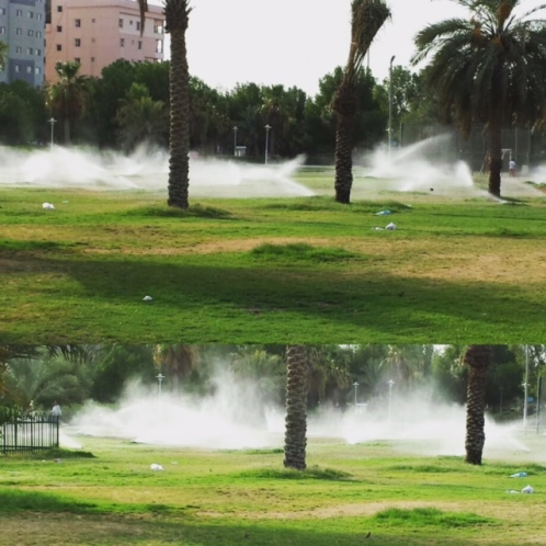 sprinkler water kuwait garden heat summer hottest